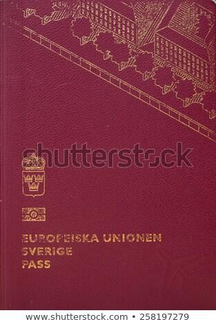 passaporte · isolado · branco · negócio · livro · fundo - foto stock © kuligssen