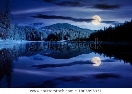 éjszakai · ég · festmény · vektor · digitális · vízfesték · égbolt - stock fotó © zzve