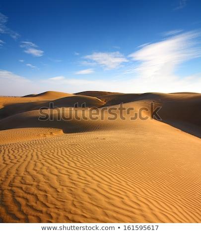 пустыне смола Индия небе облака солнце Сток-фото © Mikko