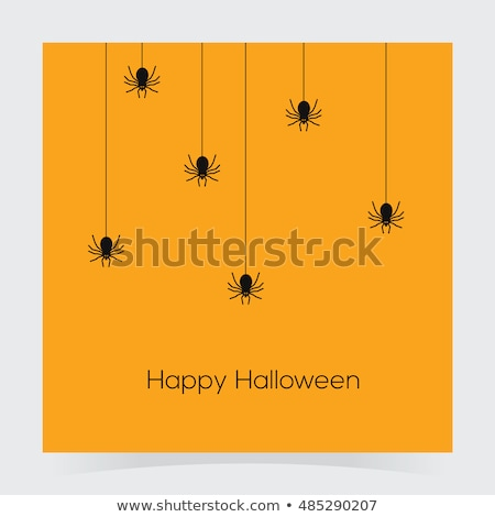 colorful spider web abstract icon stock photo © cidepix