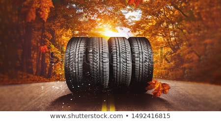 Car winter tire in autumn Stock photo © ifeelstock