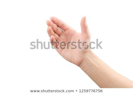 Vazio mãos homem branco humanismo fé Foto stock © almir1968