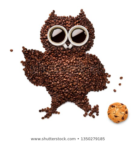 Owlet with cookie. Stock photo © Fisher
