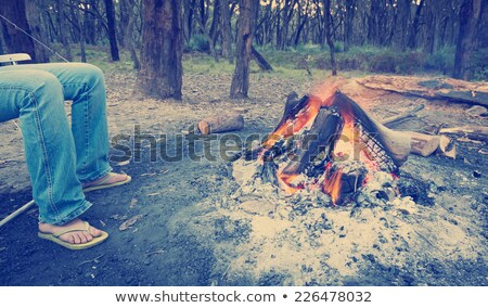 Campfire In Forest Instagram Style Stock photo © THP