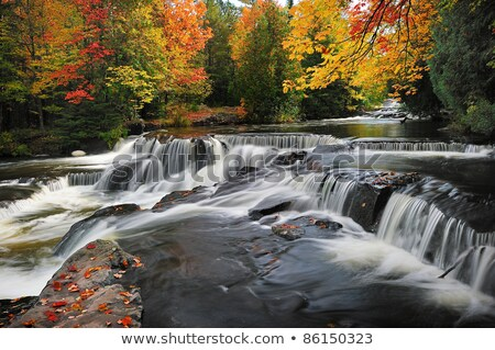 реке · фон · деревья · оранжевый - Сток-фото © wildnerdpix