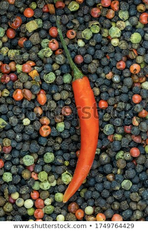 a lot of mixed peppercorns stock photo © Rob_Stark
