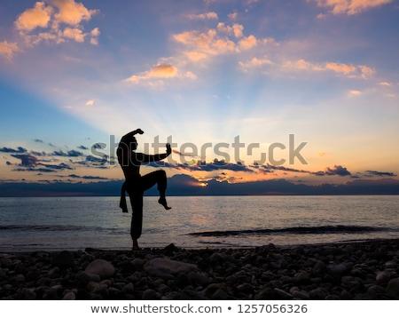 Sziluett topless sportos férfi harcol póz Stock fotó © stryjek