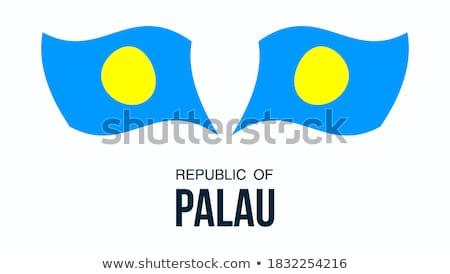 Mapa bandeira botão república Palau vetor Foto stock © Istanbul2009