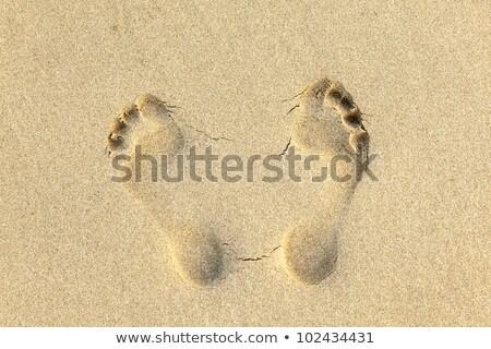 Pegadas amarelo areia natureza paisagem mar Foto stock © meinzahn