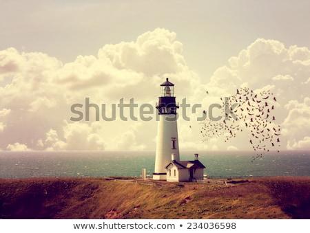öreg fehér világítótorony festői széles látószögű lövés Stock fotó © Mps197