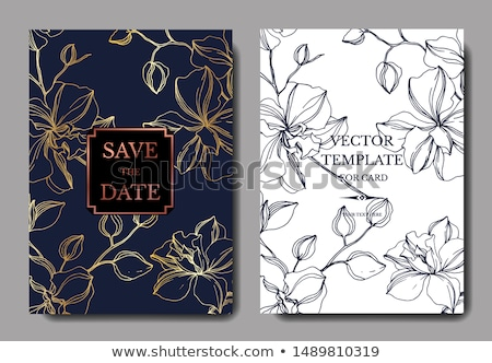 Orchidées invitation de mariage élégante image illustration belle Photo stock © Irisangel