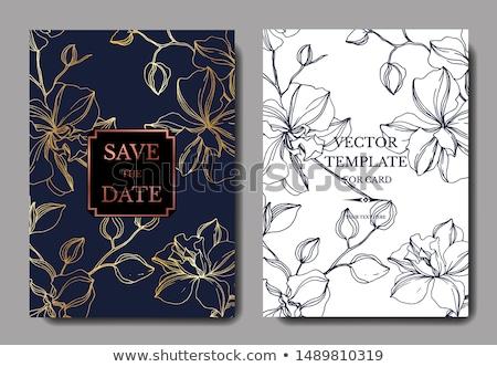 Stockfoto: Rchideeën · Huwelijksuitnodiging · Elegant