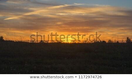 puesta · de · sol · remolino · hermosa · amanecer · australiano · playa - foto stock © madrolly