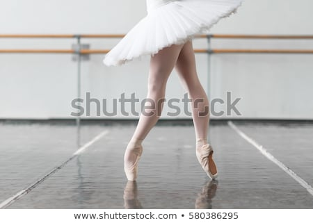 classic ballet dancer posing at barre on rehearsal room background Stock photo © master1305