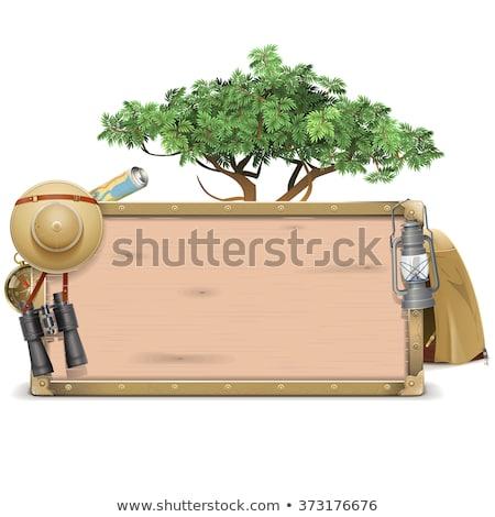 Vektor szafari óriásplakátok izolált fehér fa Stock fotó © dashadima