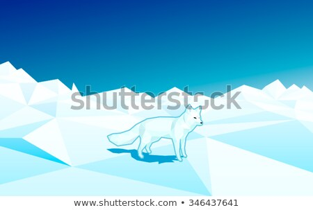 white fox in low poly style on the floe in north pole   editable polygonal vector illustration stock photo © arzawen