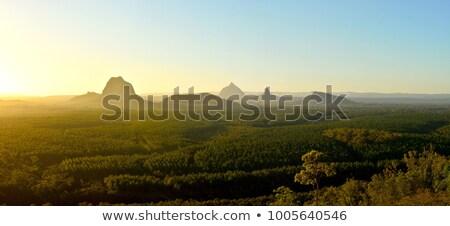 木 山 クイーンズランド州 曇った 雨の 日 ストックフォト © artistrobd
