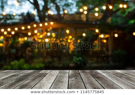 Night Garden Stock photo © rghenry