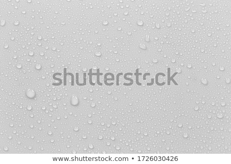 background of droplets on the surface in gray colors transparent water drop set stock photo © fosin