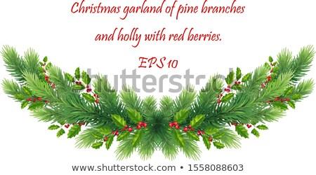 christmas · elegante · kaart · vakantie · decoratie · bes - stockfoto © piccola