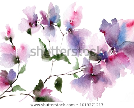 pink abstract picture of spring flowers stock photo © dariazu