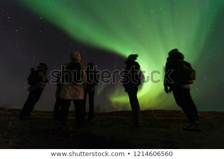 people look at the northern lights Stock photo © adrenalina
