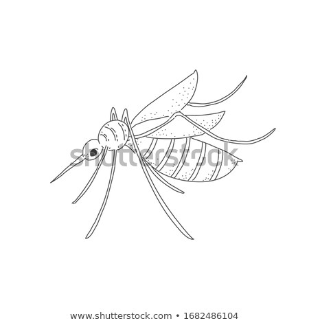 Prohibition Sign Mosquito Cartoon Character stock photo © ridjam