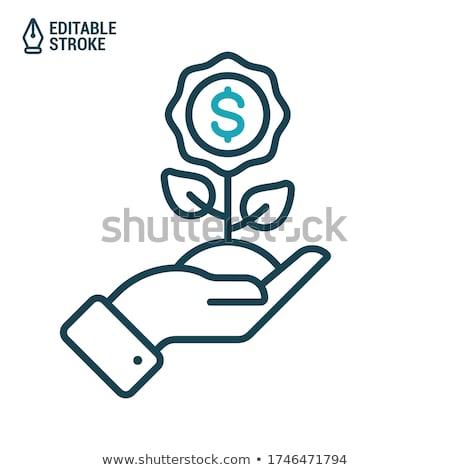 monetáris · virág · dollár · fehér · üzlet · háttér - stock fotó © rufous