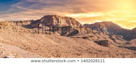 karaván · homok · rétegek · látható · dombok · teve - stock fotó © bluering