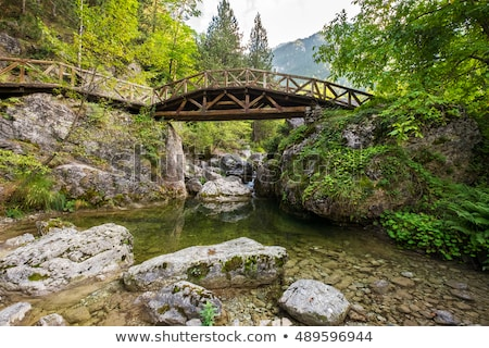 wooden bridge in the mountains of olympus greece stock photo © ankarb