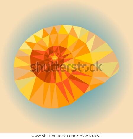 Foto stock: Mar · concha · logotipo · design · de · logotipo · 10 · abstrato