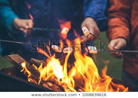 homem · sessão · acampamento · fogo · vetor · projeto - foto stock © rastudio