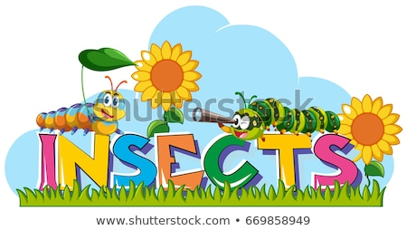 Word insects with caterpillars and sunflowers in background Stock photo © bluering