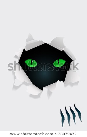 Bullet Holes and Claw Ripped Torn Background Stock photo © Krisdog