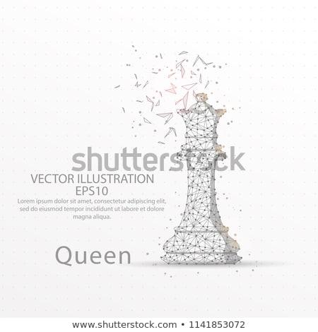 Rainha baixo 3D projeto vetor Foto stock © psychoshadow