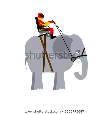 Riding elephant. Racer on wild animal. Team of beast of Africa Stock photo © popaukropa