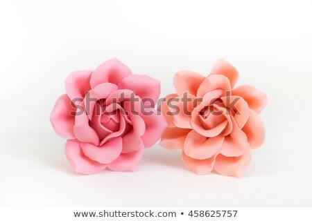 Rose sugar with flowers Stock photo © joannawnuk