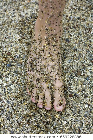 Sandy foot camouflaged against beach Stock photo © IS2