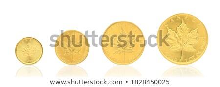 Monete bianco moneta finanziare banca contanti Foto d'archivio © wavebreak_media