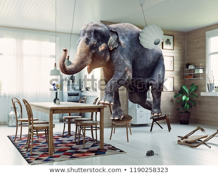Elephant with a big fear of the mouse Stock photo © Ustofre9