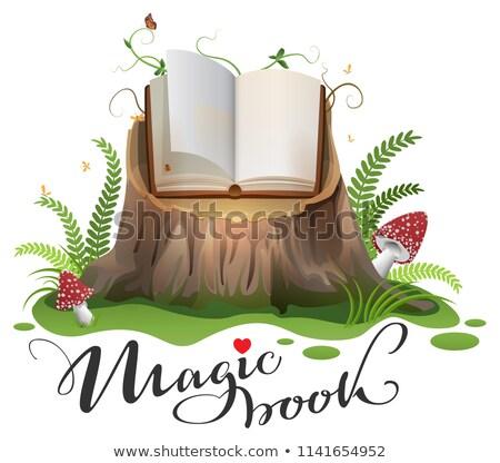 mágikus · könyv · nyitva · repülés · ragyogó · csillagok - stock fotó © orensila