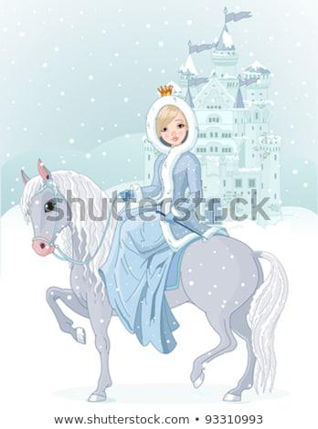 王女 城 動物 冬 グレー 森林 ストックフォト © liolle