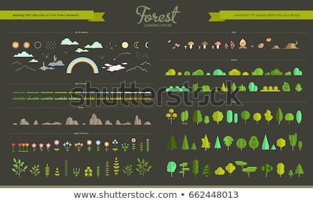 Szett különböző természet tárgyak illusztráció út Stock fotó © bluering