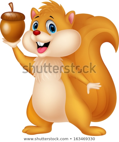 squirrel cartoon animal character with acorn Stock photo © izakowski