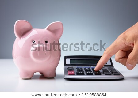 Person Calculating With Calculator Near Piggy Bank At Desk Stock photo © AndreyPopov