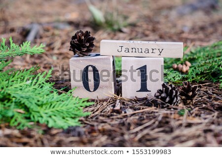 1 January in wooden cube calendar Stock photo © furmanphoto