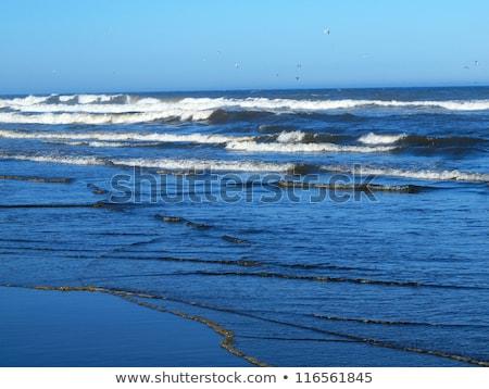 grande · ondas · costa · mar · espuma · praia - foto stock © frankljr