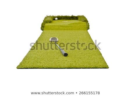 ミニ ゴルフ 白 孤立した 家族 少女 ストックフォト © vlaru