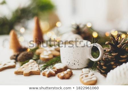 счастливым зима красивой Сток-фото © bluefern