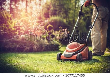 Senior with gardener and lawnmower Stock photo © photography33